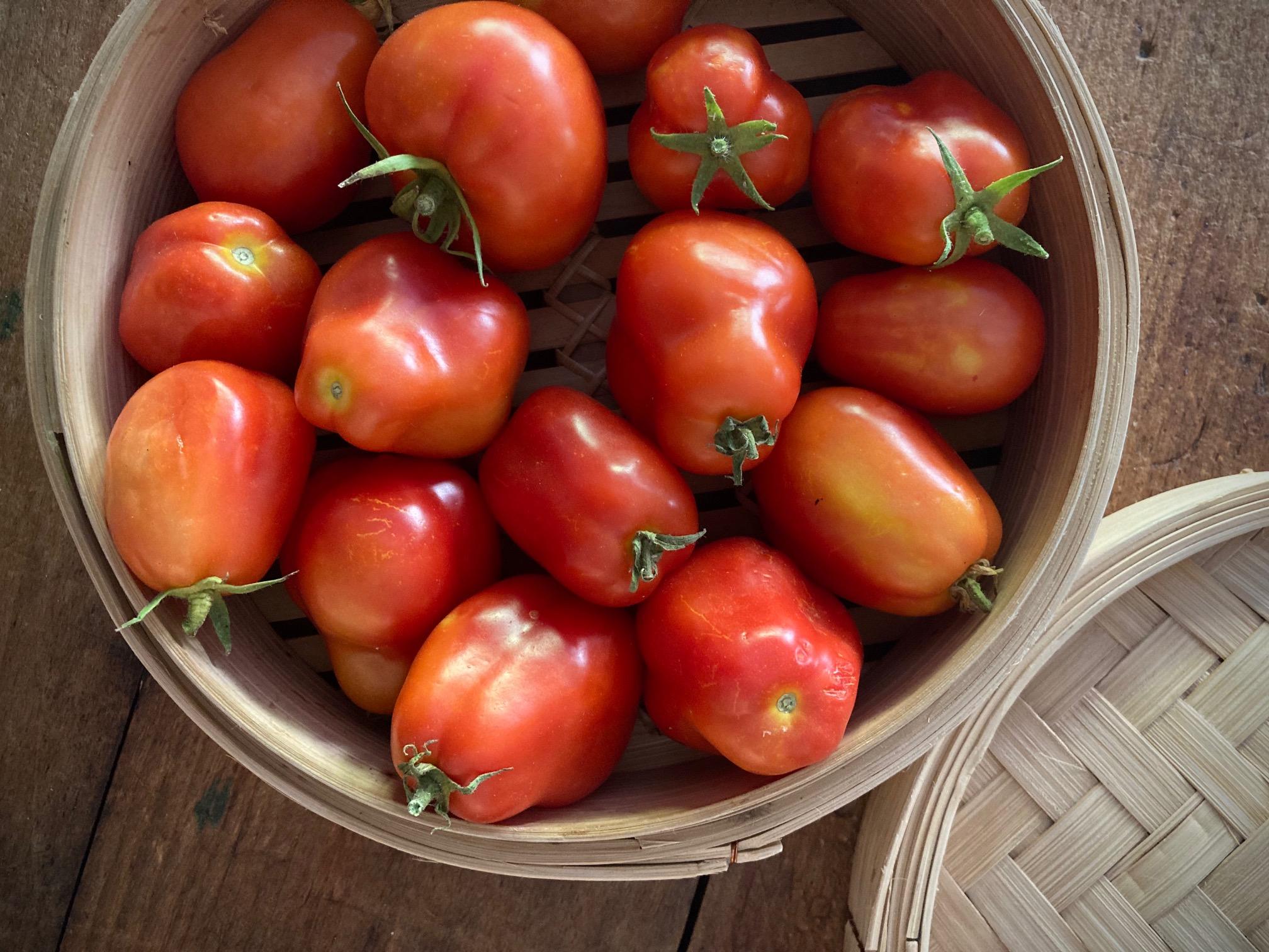 Tomates_confites_1